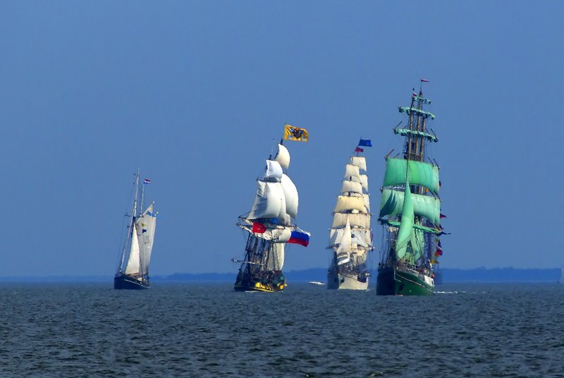tall ship race regaty